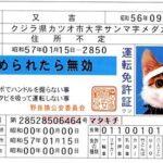 国際運転免許証は、ネーミングの変更を!